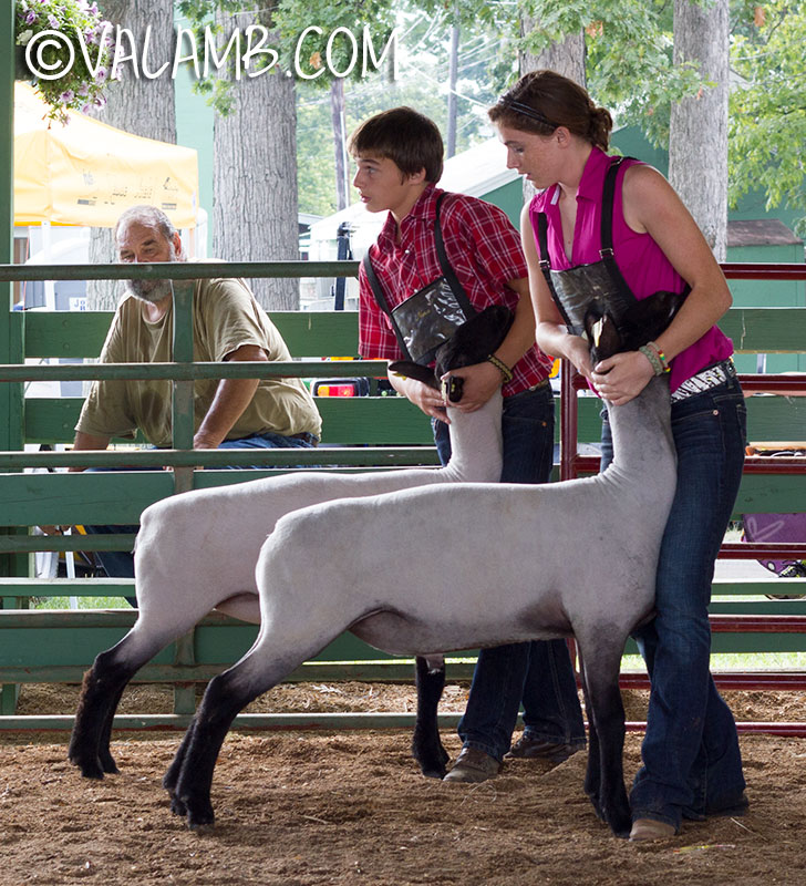 Champion & Reserve Champion Bred & Owned Market Lambs